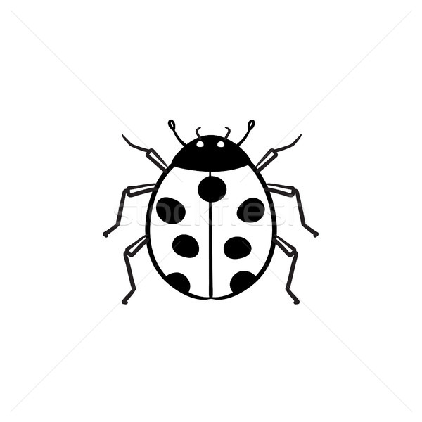 Ladybug hand drawn sketch icon. Stock photo © RAStudio