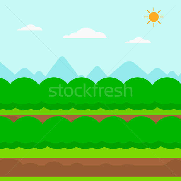 Background of field rows with green bushes. Stock photo © RAStudio