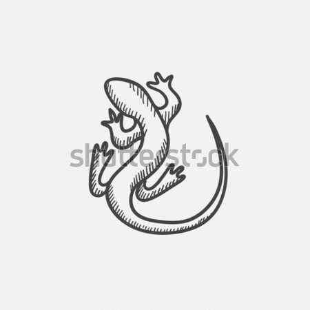 Lizard sketch icon. Stock photo © RAStudio