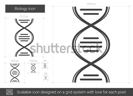 Biológia vonal ikon vektor izolált fehér Stock fotó © RAStudio
