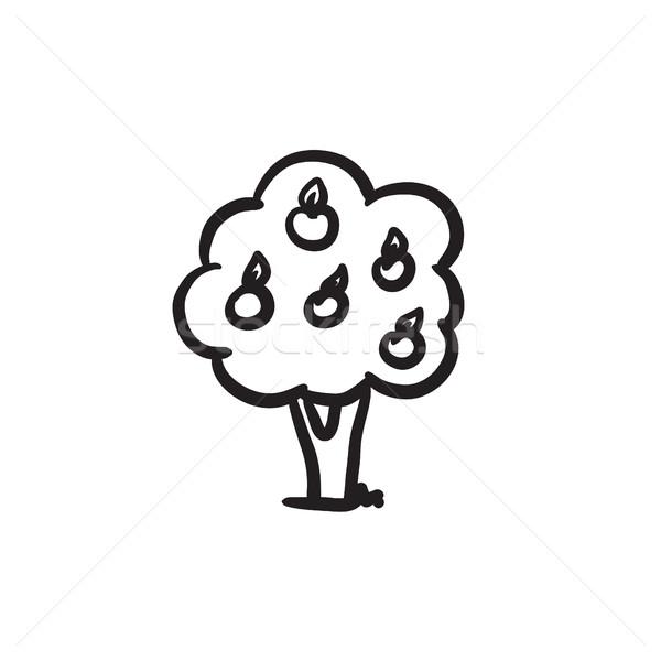 Fruit tree sketch icon. Stock photo © RAStudio
