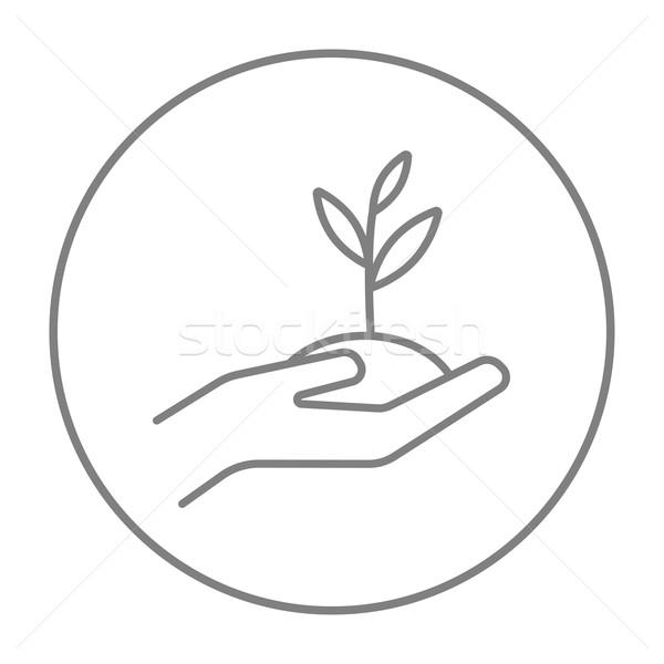 Mãos plântula solo linha ícone Foto stock © RAStudio