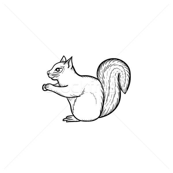 Squirrel hand drawn sketch icon. Stock photo © RAStudio