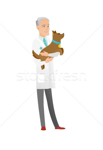 старший кавказский ветеринар собака рук врач Сток-фото © RAStudio