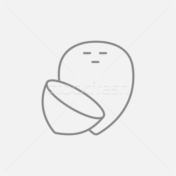 Coconut line icon. Stock photo © RAStudio