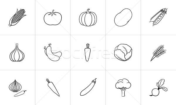 Agriculture food hand drawn sketch icon set. Stock photo © RAStudio