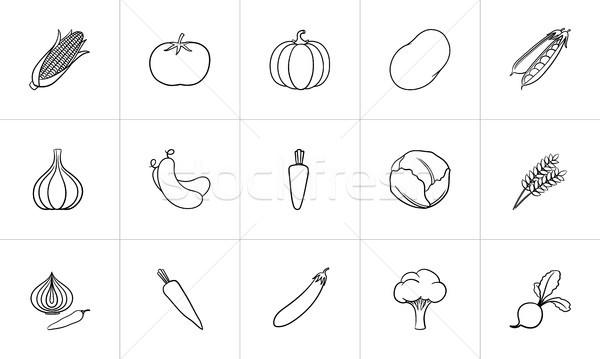 Mezőgazdaság étel kézzel rajzolt rajz ikon gyűjtemény háló Stock fotó © RAStudio