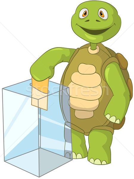 Komik kaplumbağa seçim yalıtılmış beyaz Stok fotoğraf © RAStudio