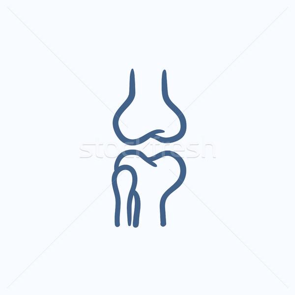 Knie gezamenlijk schets icon vector geïsoleerd Stockfoto © RAStudio