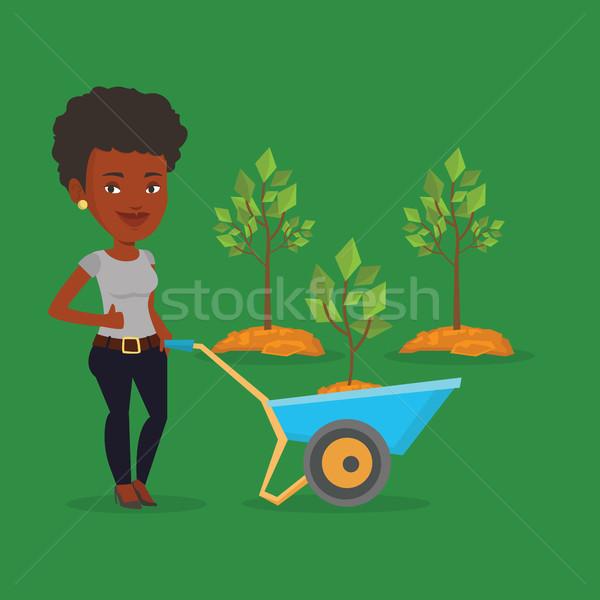 Kadın itme el arabası bitki genç bahçıvan Stok fotoğraf © RAStudio