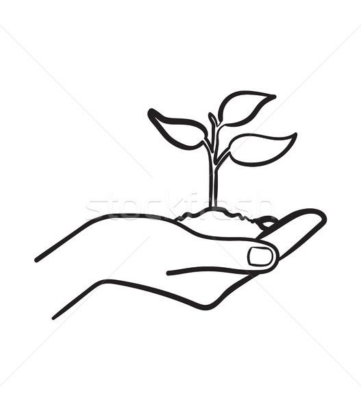 人の手 芽 手描き スケッチ アイコン ストックフォト © RAStudio