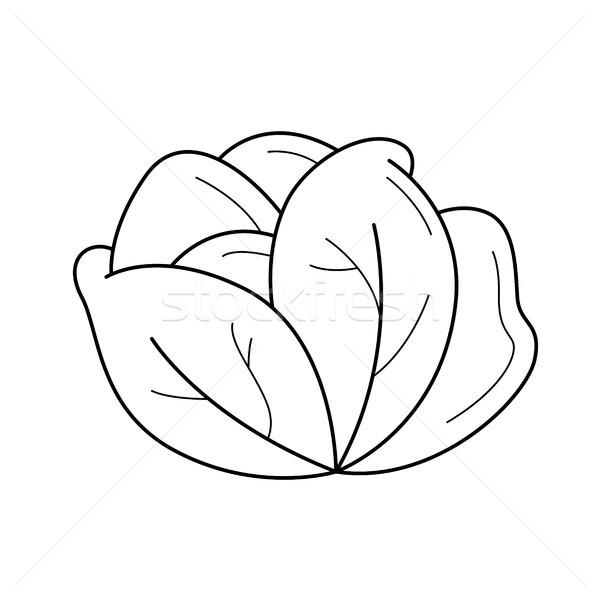 белый капуста вектора линия икона изолированный Сток-фото © RAStudio