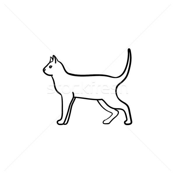 Cat hand drawn sketch icon. Stock photo © RAStudio