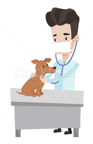 Stock photo: Veterinarian examining dog vector illustration.
