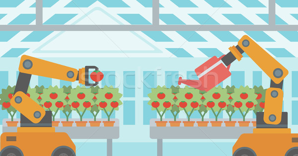 Robot werken broeikas tomaten oogst Stockfoto © RAStudio