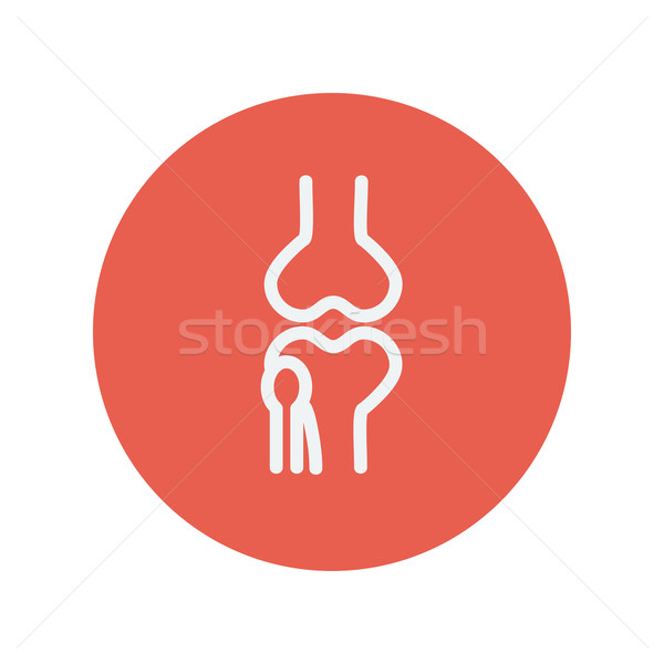 Knee joint thin line icon Stock photo © RAStudio