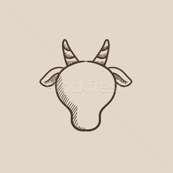 Cow head sketch icon. Stock photo © RAStudio