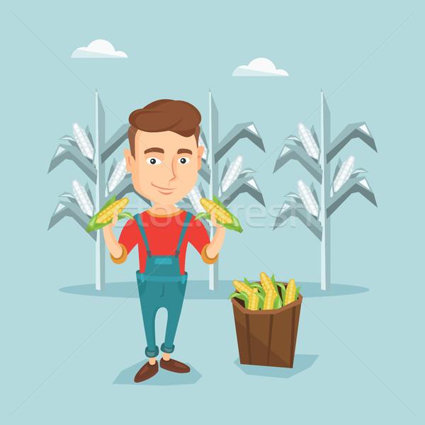 Stockfoto: Landbouwer · verzamelen · mais · jonge · kaukasisch