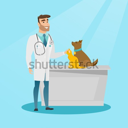 старший кавказский ветеринар собака больницу Сток-фото © RAStudio