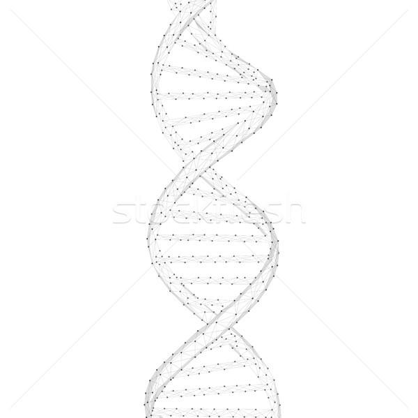 DNA chain vector illustration. Stock photo © RAStudio