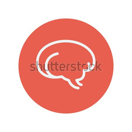Human brain thin line icon Stock photo © RAStudio