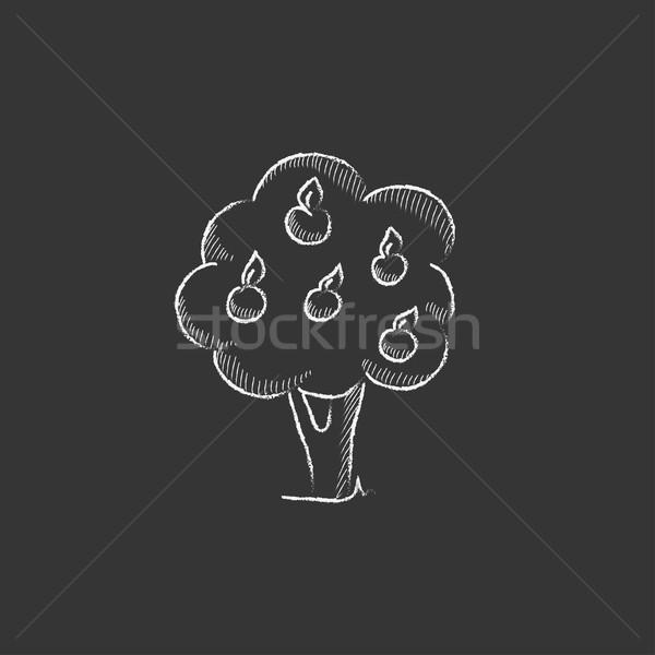 Fruit tree. Drawn in chalk icon. Stock photo © RAStudio