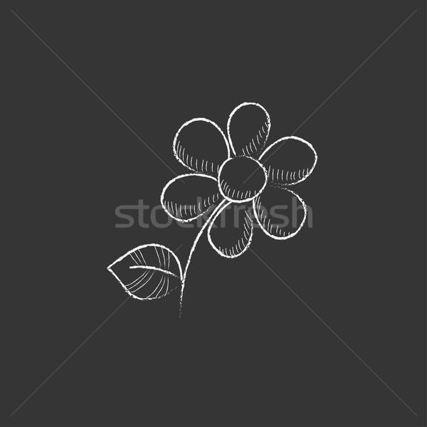 Flower. Drawn in chalk icon. Stock photo © RAStudio