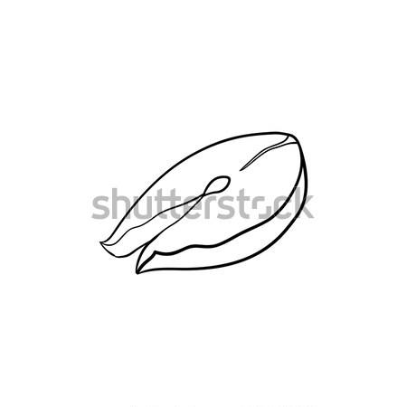 Foto stock: Peces · filete · dibujado · a · mano · boceto · icono