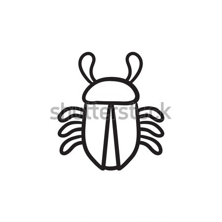 Computer bug sketch icon. Stock photo © RAStudio