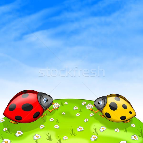 Ladybird Stock photo © RAStudio
