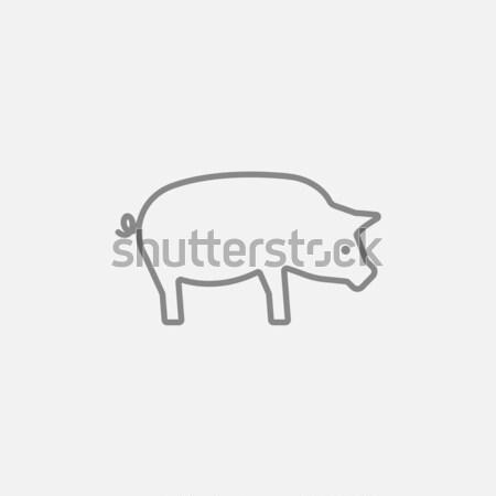 свинья линия икона веб мобильных Инфографика Сток-фото © RAStudio