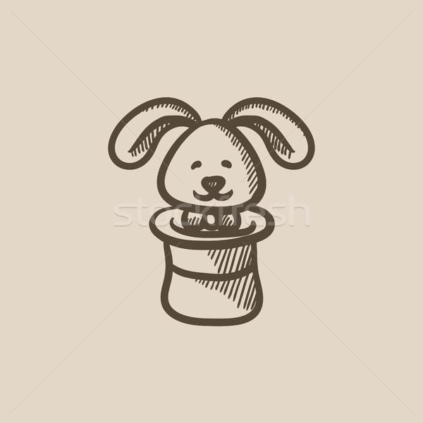 Nyúl bűvész kalap rajz ikon vektor Stock fotó © RAStudio
