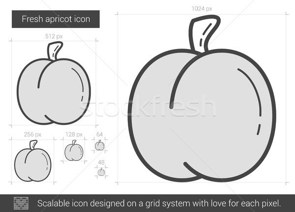 Frescos albaricoque línea icono vector aislado Foto stock © RAStudio