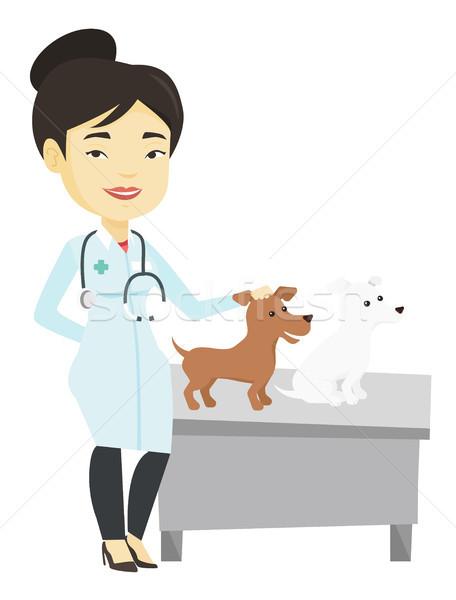 Veterinario cani giovani asian stetoscopio Foto d'archivio © RAStudio