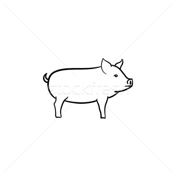 Pig hand drawn sketch icon. Stock photo © RAStudio