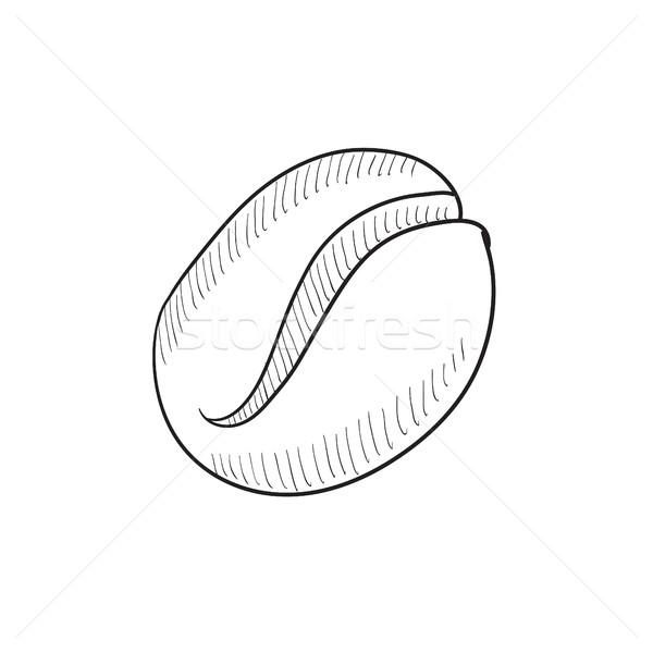 Kávébab rajz ikon vektor izolált kézzel rajzolt Stock fotó © RAStudio