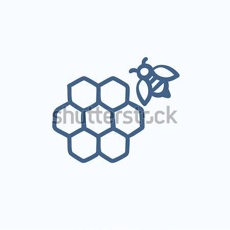 Foto stock: Favo · de · mel · abelha · esboço · ícone · teia · móvel