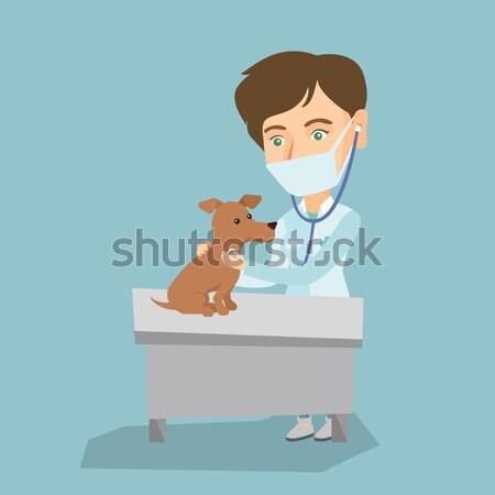 Vétérinaire chien jeunes Homme pulsation Photo stock © RAStudio