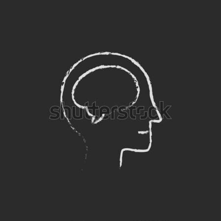 Human head with brain icon drawn in chalk. Stock photo © RAStudio