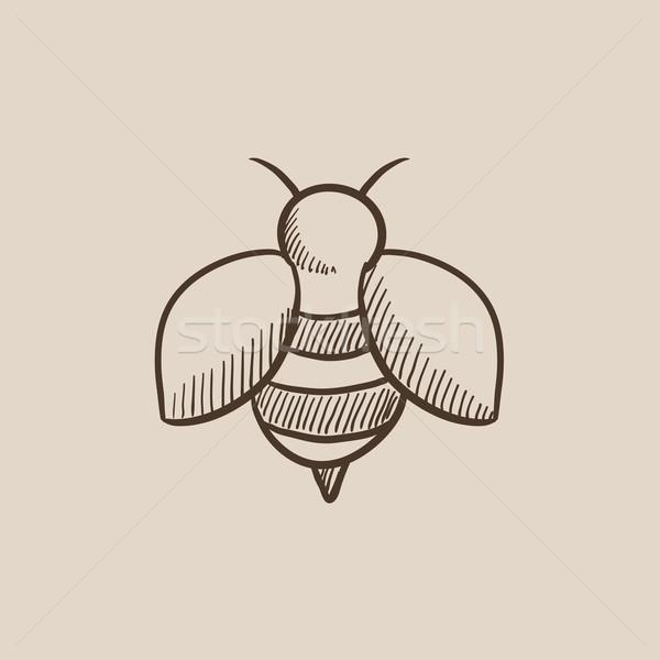 Bee эскиз икона веб мобильных Инфографика Сток-фото © RAStudio