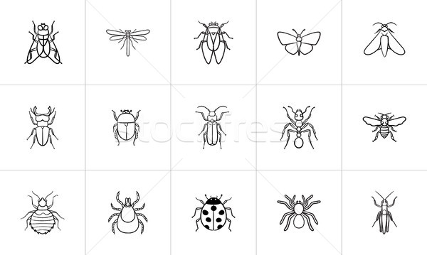 Insects sketch icon set. Stock photo © RAStudio