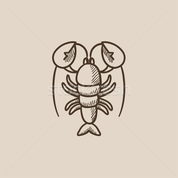 Aragosta sketch icona web mobile infografica Foto d'archivio © RAStudio