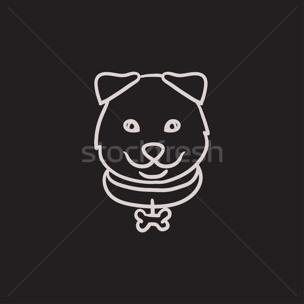 Dog head sketch icon. Stock photo © RAStudio