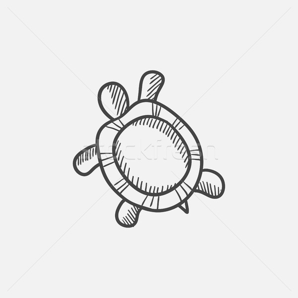 Turtle sketch icon. Stock photo © RAStudio