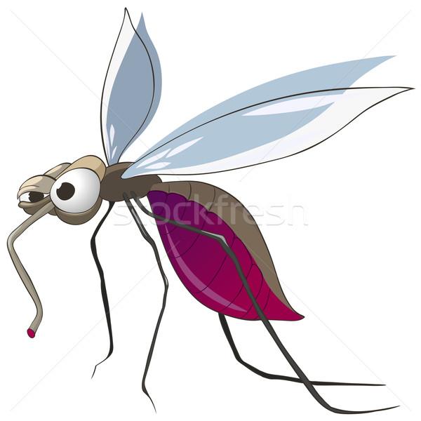 Zanzara isolato bianco vettore baby Foto d'archivio © RAStudio