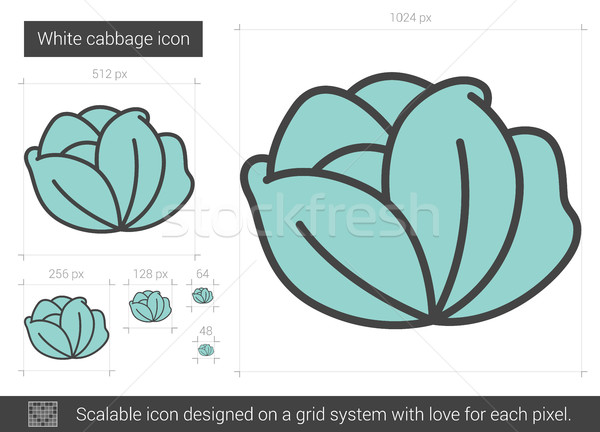 White cabbage line icon. Stock photo © RAStudio