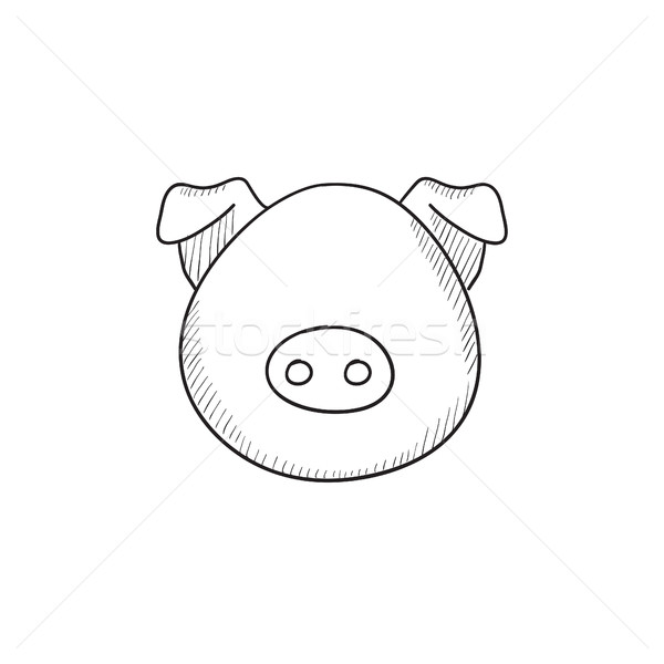 Pig head sketch icon. Stock photo © RAStudio