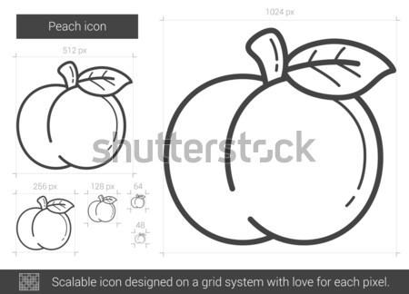 Perzik lijn icon vector geïsoleerd witte Stockfoto © RAStudio