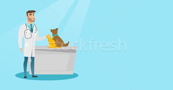 Stock photo: Veterinarian examining dogs vector illustration.