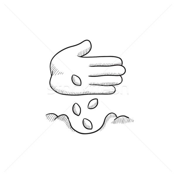 Hand planting seeds in ground sketch icon. Stock photo © RAStudio